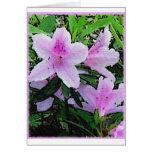 Floración de las azaleas felicitaciones