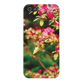 Floración de las azaleas iPhone 5 carcasa
