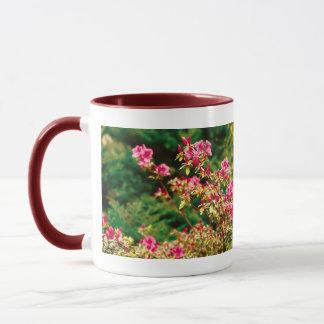 Floración de las azaleas taza