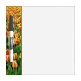 Floración de los tulipanes de la primavera delante pizarras