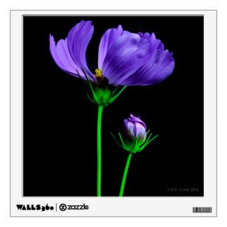 Floración de medianoche vinilo