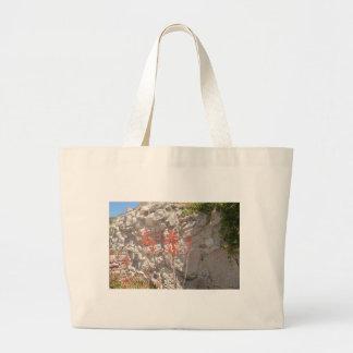Floración del agavo bolsas