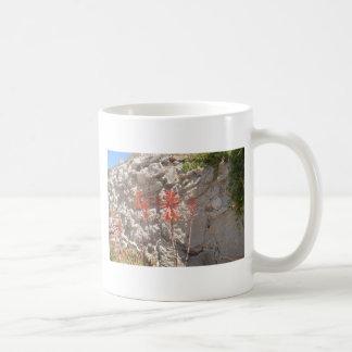 Floración del agavo tazas