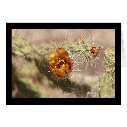 Floración del cactus de Cholla Felicitación