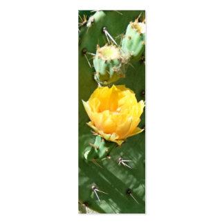 Floración del cactus de la sol plantillas de tarjeta de negocio