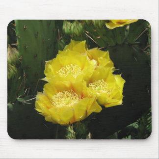 Floración del cactus del higo chumbo alfombrillas de ratones