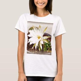 Floración del cactus playera