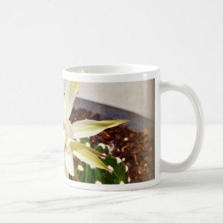 Floración del cactus taza de café