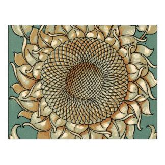 Floración del girasol en fondo azulverde tarjeta postal