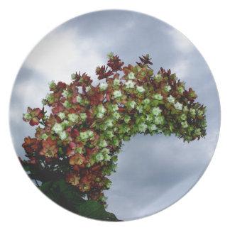 Floración del Hydrangea de Oakleaf Plato De Comida