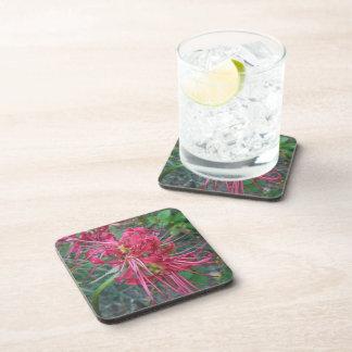 Floración del lirio de la araña posavasos de bebida