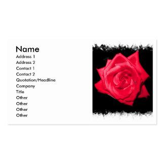 Floración del rosa rojo contra un contexto dentado tarjetas de visita