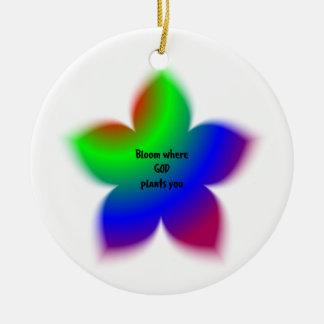 Floración donde dios le planta ornamentos de navidad