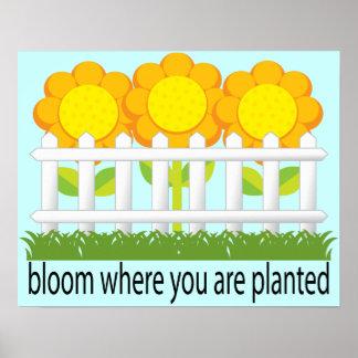 Floración donde impresión plantada del jardín