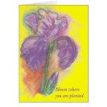 Floración donde le plantan 9 tarjeta
