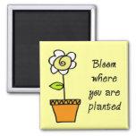 Floración donde le plantan II Imán De Frigorifico