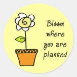 Floración donde le plantan II Pegatinas Redondas