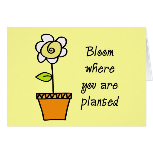 Floración donde le plantan II Tarjetas