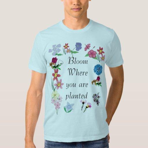 Floración donde le plantan playera