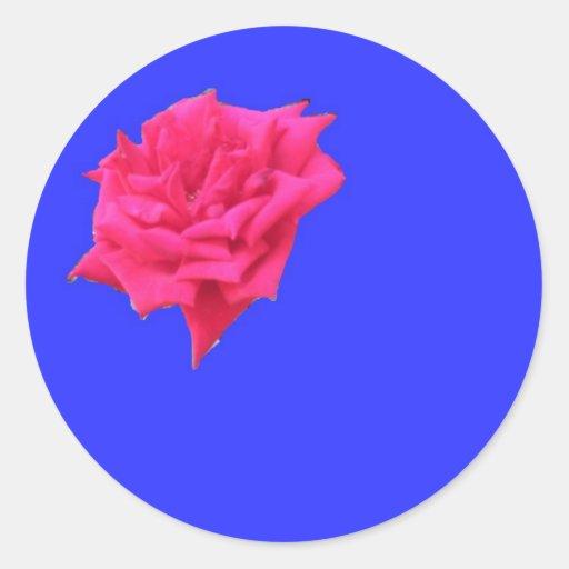 Floración donde plantado (azul) pegatina redonda