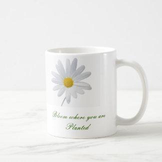 Floración donde usted está imagen plantada de la taza de café