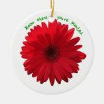 Floración donde usted está ornamento plantado adorno de navidad