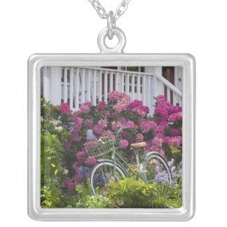 Floración espectacular de la primavera, antigüedad collar plateado