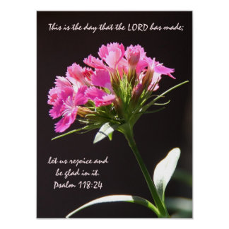 Floración floral rosada con verso a partir del póster