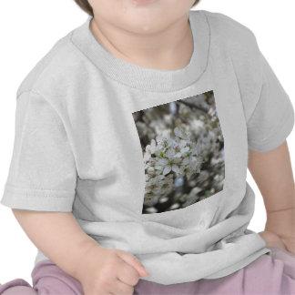 Floración floreciente del peral camisetas