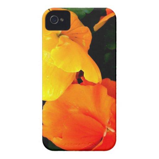 Floración iPhone 4 Carcasas