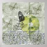 Floración inspirada de la mariposa posters