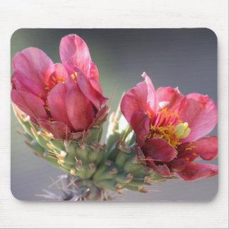 Floración Mousepad de Cholla