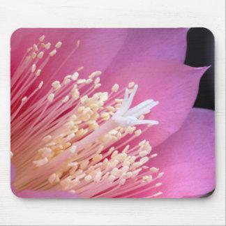 Floración Mousepad del cactus
