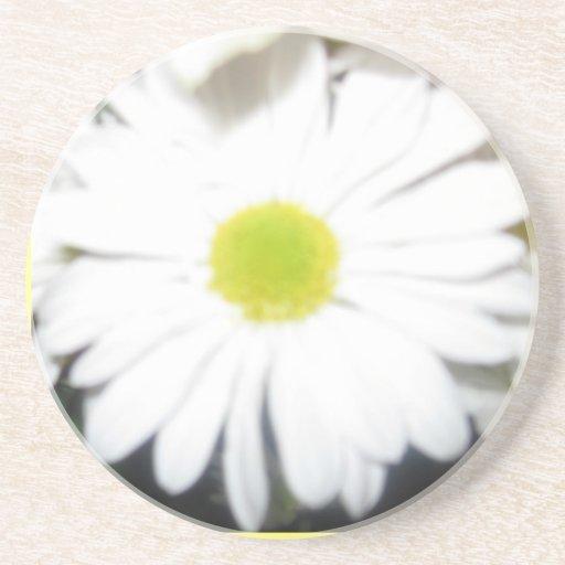 Floración Posavasos Para Bebidas