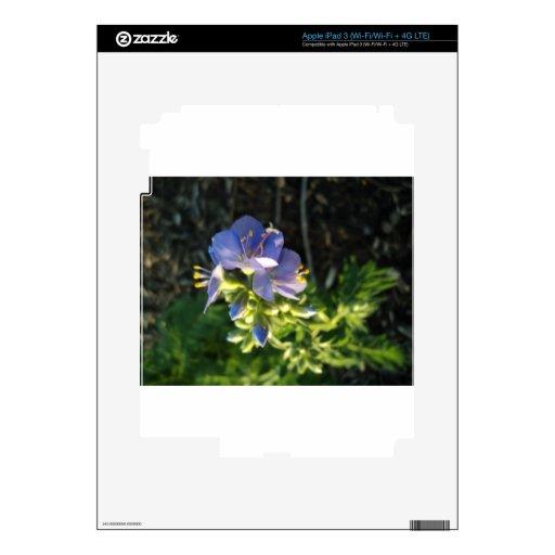 Floración púrpura iPad 3 pegatinas skins
