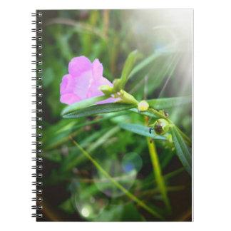 Floración púrpura minúscula en el cuaderno de