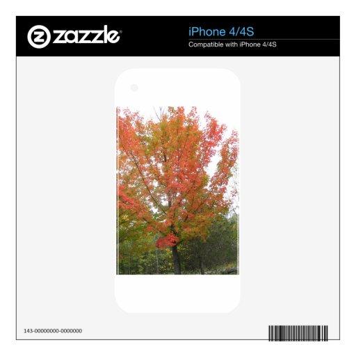 Floración roja de CANADÁ Toronto - opiniones de la iPhone 4 Skin