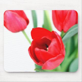 Floración roja de los tulipanes alfombrilla de ratón