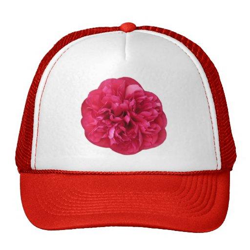 Floración roja gorra