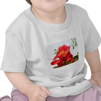 Floración roja para el amor camiseta