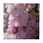 Floración rosada azulejo cerámica