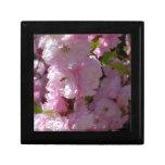 Floración rosada caja de regalo