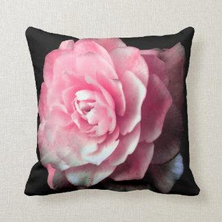 Floración rosada con el fondo negro cojín