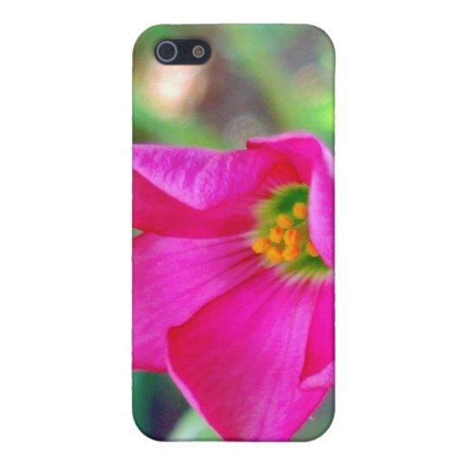 Floración rosada del alazán de cuatro hojas iPhone 5 fundas