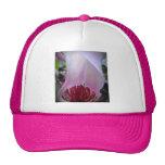 Floración rosada del árbol de tulipán gorros bordados