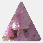 Floración rosada pegatina de trianguladas