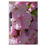 Floración rosada tablero blanco