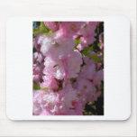 Floración rosada tapetes de ratones