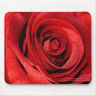 """""""Floración sedosa del rosa rojo """" Alfombrilla De Ratón"""