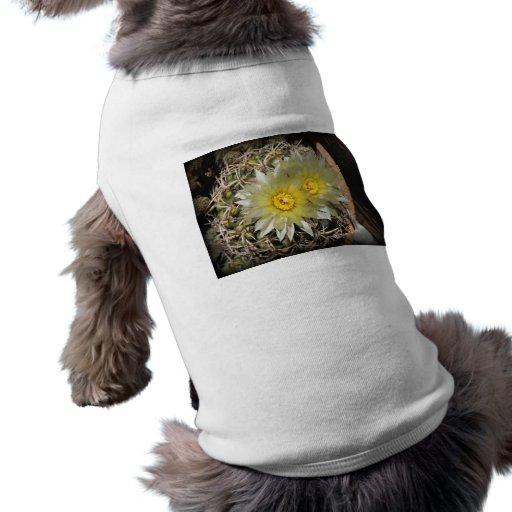 Floraciones amarillas del cactus playera sin mangas para perro